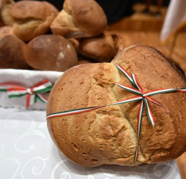 Свечаност поводом националног празника 20. августа, Нови Сад